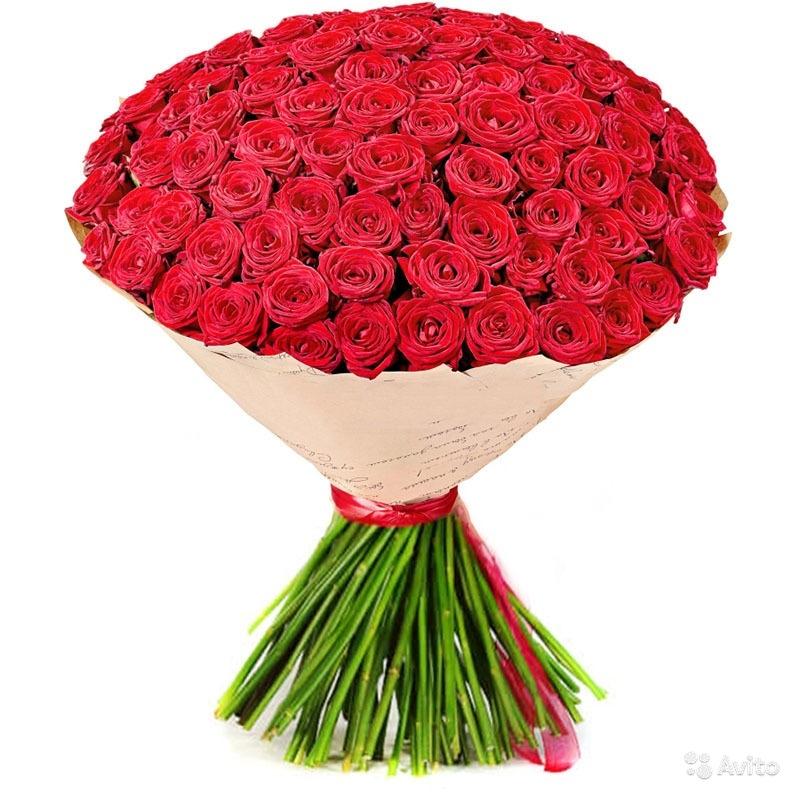 Букет цветы из 50 роз спб, цветов рисунок