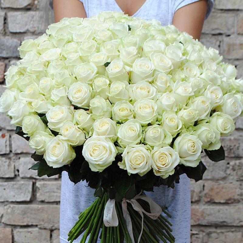 Букет из 101 розы Аваланж №53