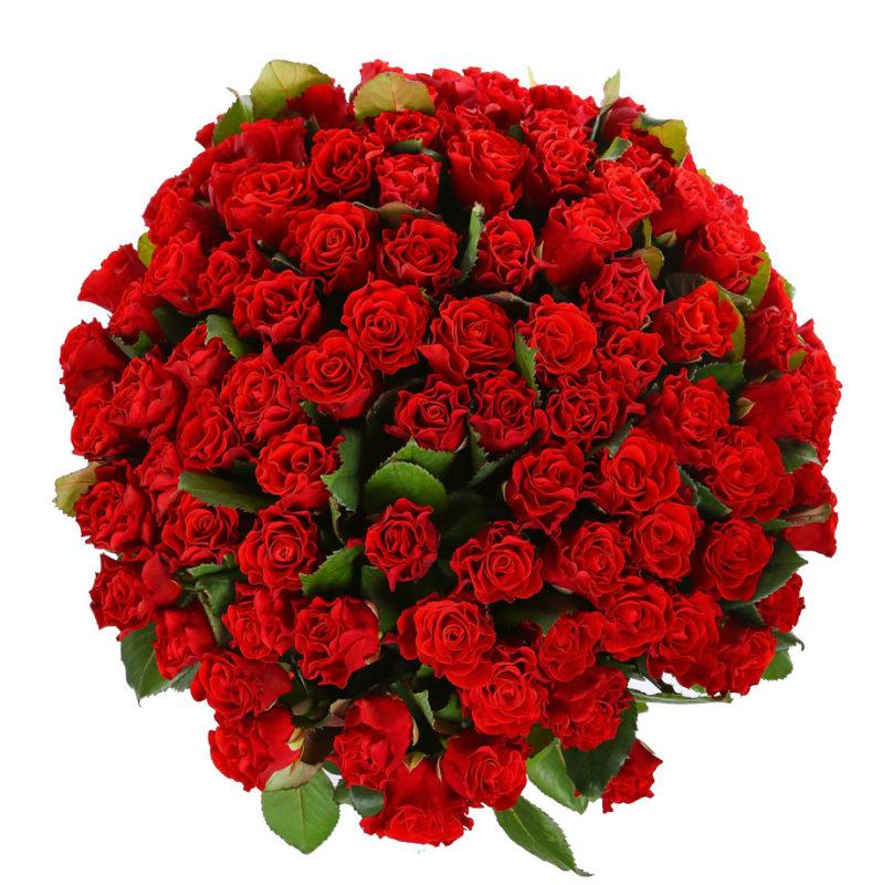 Букет из 101 розы №73